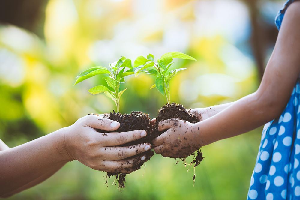 Biostimolante genomico Resalt nell'agricoltura
